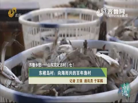 齐鲁乡愁——山东文化古村(七)东楮岛村:向海而兴的百年渔村