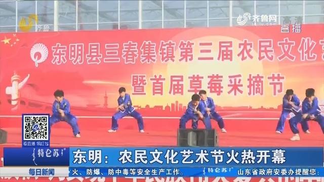 东明:农民文化艺术节火热开幕