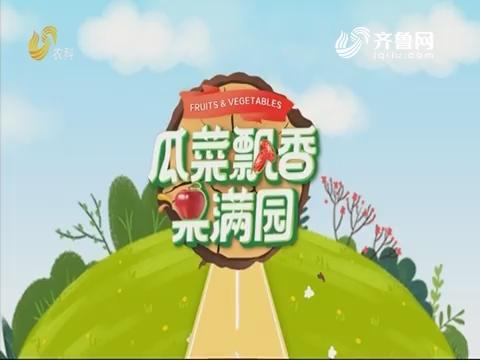 2019年12月31日《亲土种植·瓜菜飘香果满园》完整版