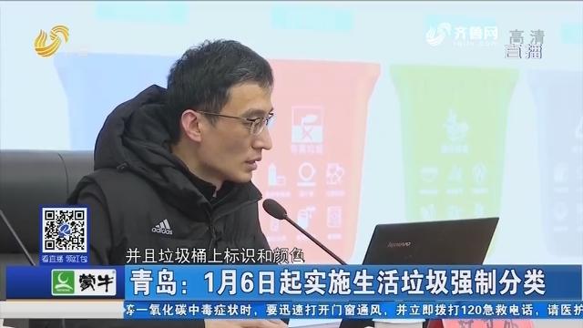 青岛:1月6日起实施生活垃圾强制分类