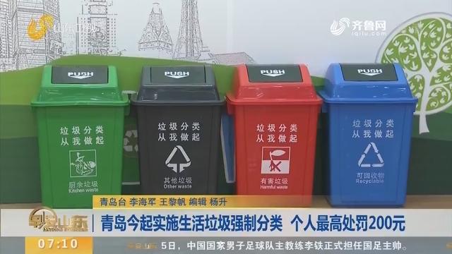 青岛1月6日起实施生活垃圾强制分类 个人最高处罚200元