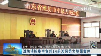《法院在线》01-04播出《潍坊法院集中宣判14起涉黑恶势力犯罪案件》