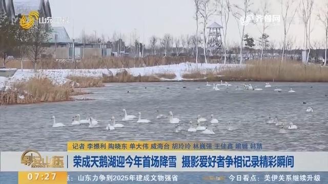 荣成天鹅湖迎2020年首场降雪 摄影爱好者争相记录精彩瞬间