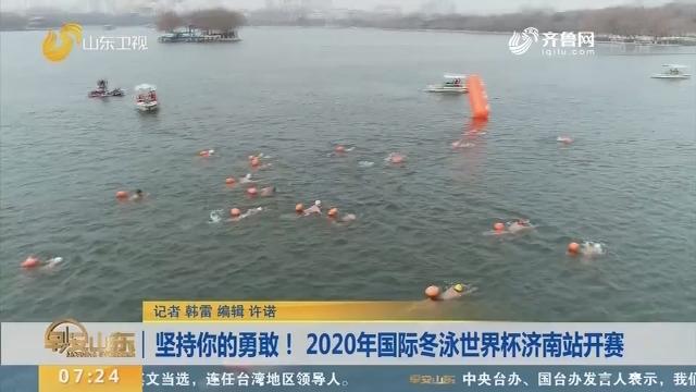 坚持你的勇敢!2020年国际冬泳世界杯济南站开赛