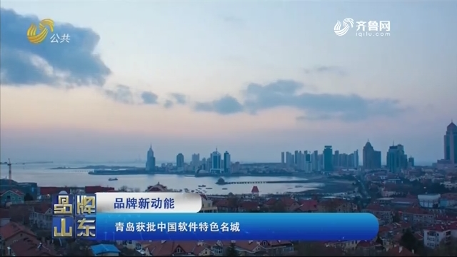 【品牌新动能】青岛获批中国软件特色名城
