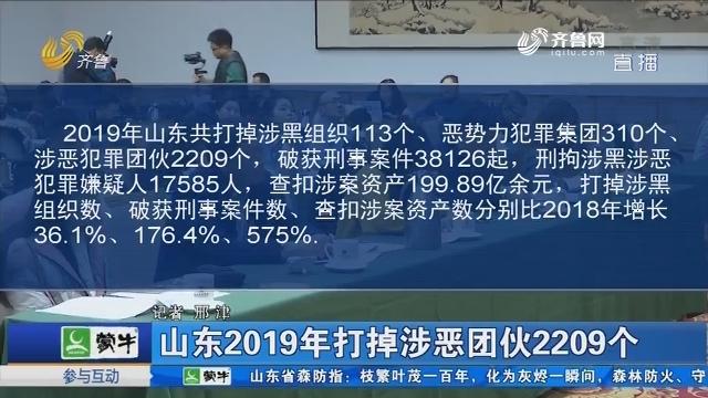 山东2019年打掉涉恶团伙2209个