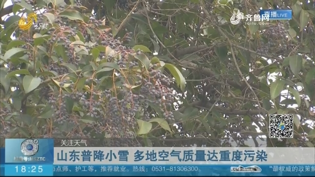 【关注天气】山东普降小雪 多地空气质量达重度污染
