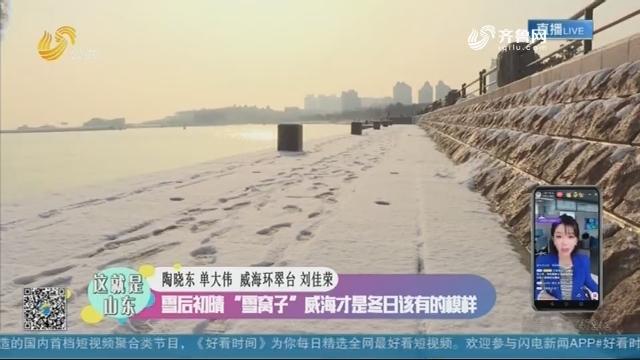 """【这就是山东】雪后初晴 """"雪窝子""""威海才是冬日该有的模样"""