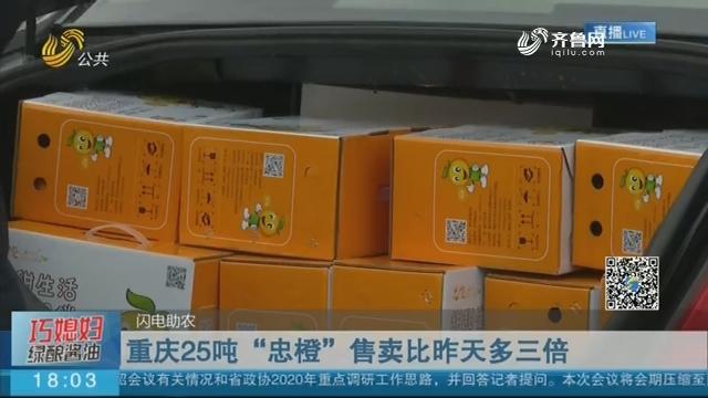 重庆25吨忠橙售卖第二天