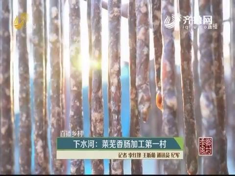 【直播乡村】下水河:莱芜香肠加工第一村