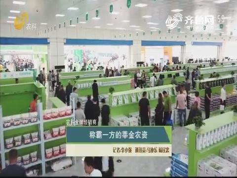 【农科金牌经销商】称霸一方的莘金农资