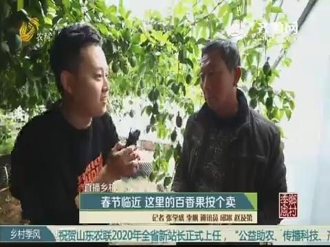【直播乡村 幸福小康年】春节临近 这里的百香果按个卖