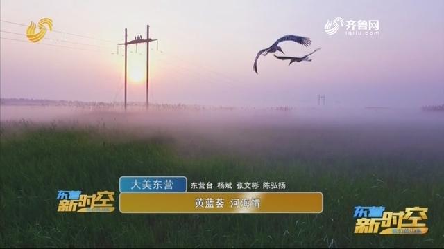 【大美东营】黄蓝荟 河海情