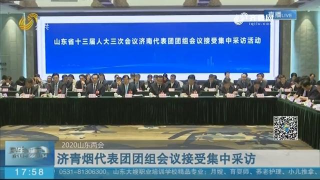 济青烟代表团团组会议接受集中采访