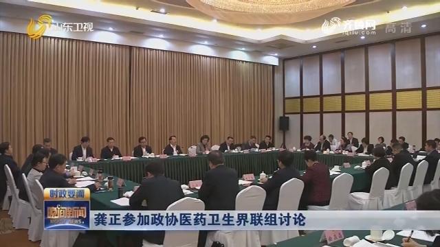 龔正參加政協醫藥衛生界聯組討論
