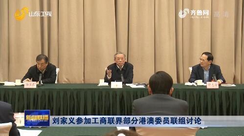 刘家义参加工商联界部分港澳委员联组讨论