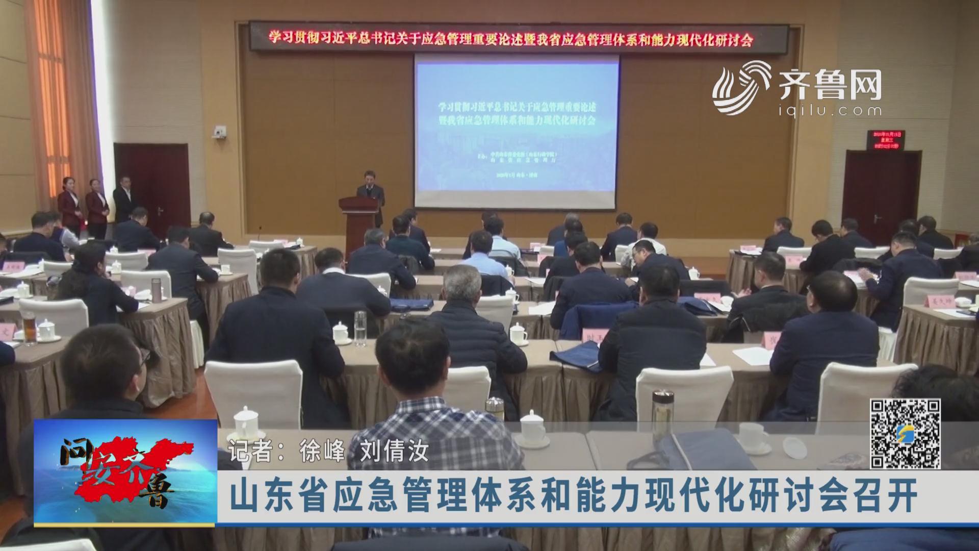 《问安齐鲁》20200219:山东省应急管理体系和能力现代化研讨会召开