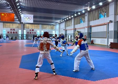 山东跆拳道 小队员也有大梦想