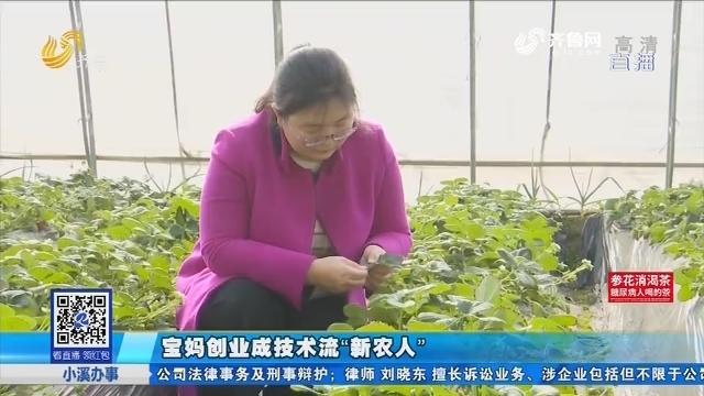 """青岛:宝妈创业成技术流""""新农人"""""""