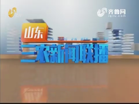 2020年01月22日山东三农新闻联播完整版