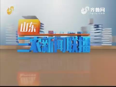 2020年01月23日山东三农新闻联播完整版