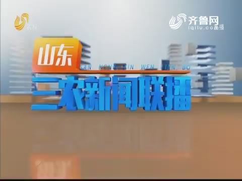 2020年01月24日山东三农新闻联播完整版