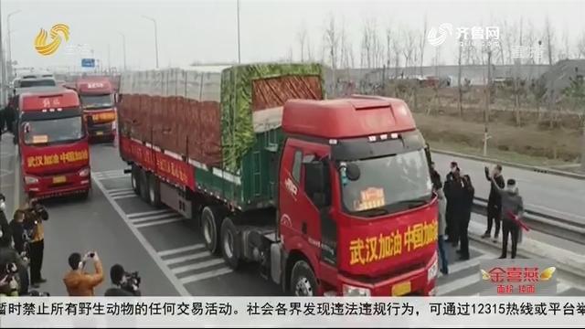 寿光:驰援武汉 350吨蔬菜无偿捐赠