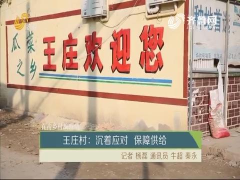 【直击乡村战疫情】王庄村:沉着应对 保障供给