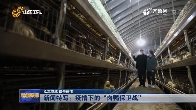 """【众志成城 抗击疫情】新闻特写:疫情下的""""肉鸭保卫战"""""""