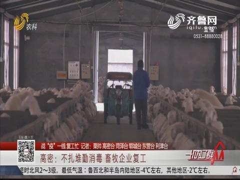 """【战""""疫""""一线复工忙】高密:不扎堆勤消毒 畜牧企业复工"""
