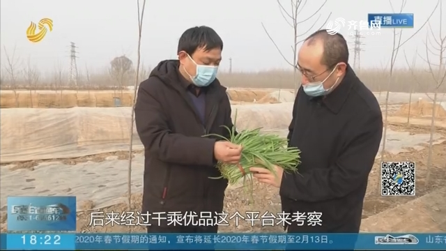 【众志成城 抗击疫情】滨州博兴:商超联动 电商助力 缓解菜农难题