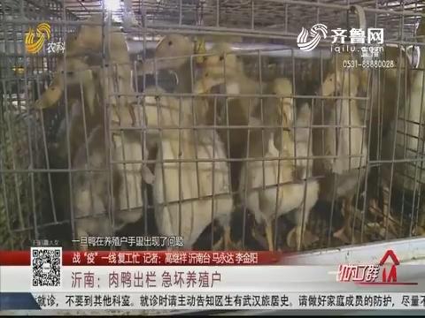 """【战""""疫""""一线 复工忙】沂南:肉鸭出栏 急坏养殖户"""