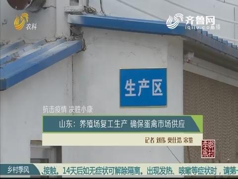 【抗击疫情 决胜小康】山东:养殖场恢复生产 确保蛋禽市场供应