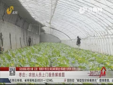 【众志成城决胜小康】枣庄:农技人员上门服务解难题