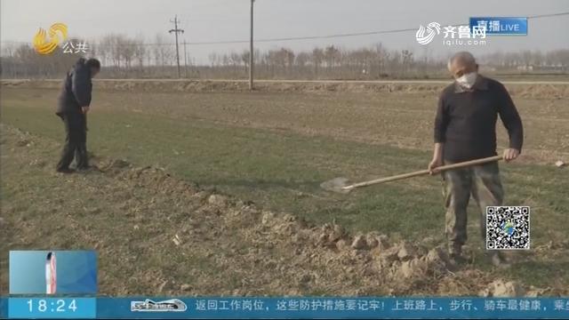 """滨州无棣:抗疫生产两不误 为全村小麦""""解渴"""""""