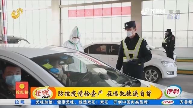 齐河:防控疫情检查严 在逃犯被逼自首