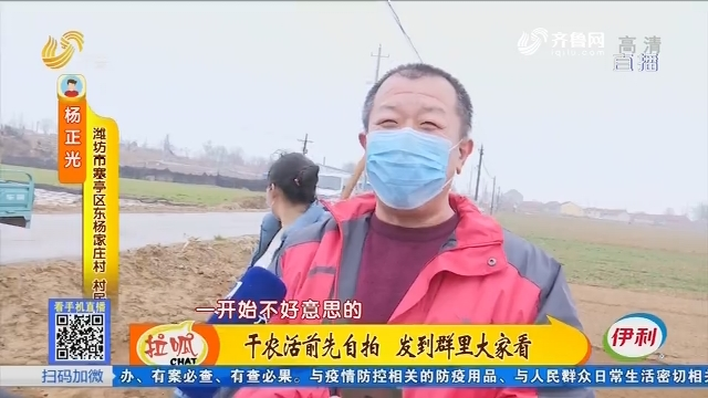 潍坊:干农活前先自拍 发到群里大家看