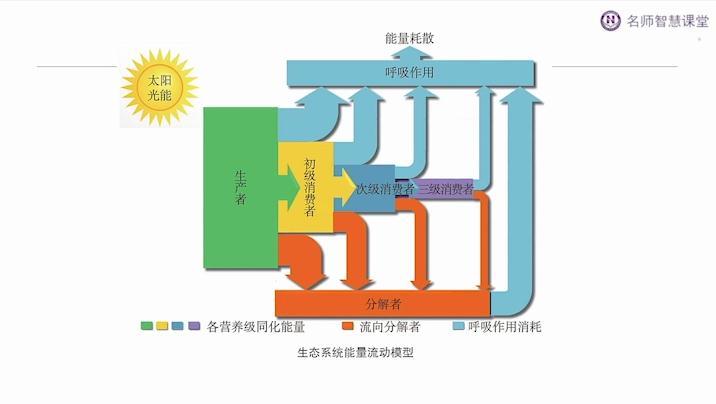 生物与环境:发酵工程(二)