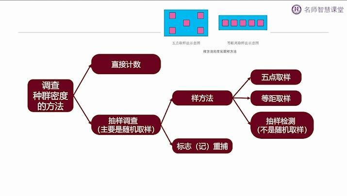 生物与环境:发酵工程(一)