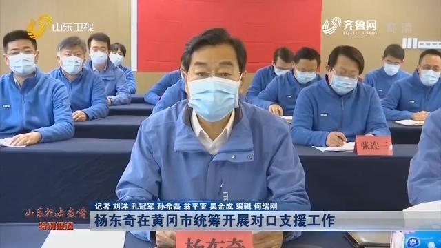 杨东奇在黄冈市统筹开展对口支援工作