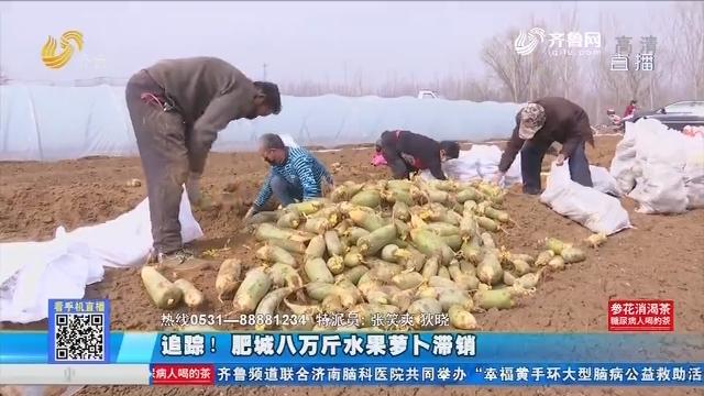 【马上就办】追踪!肥城八万斤水果萝卜滞销