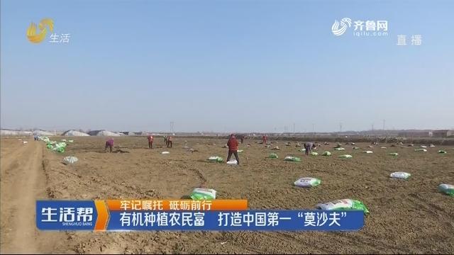 """【牢记嘱托 砥砺前行】有机种植农民富 打造中国第一""""莫沙夫"""""""