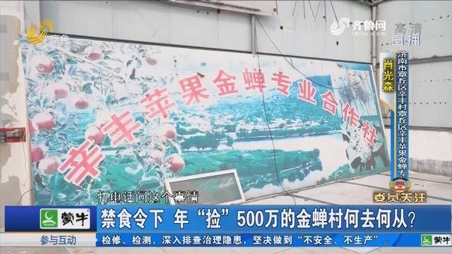 """【委员关注】禁食令下 年""""捡""""500万的金蝉村何去何从?"""