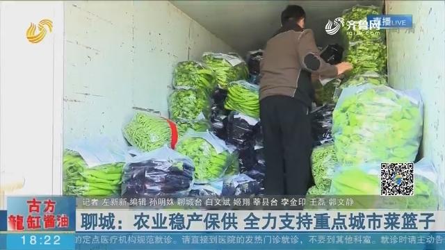 聊城:农业稳产保供 全力支持重点城市菜篮子