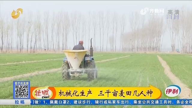 德州:机械化生产 三千亩麦田几人种