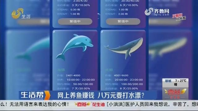 潍坊:网上养鱼赚钱 八万元要打水漂?