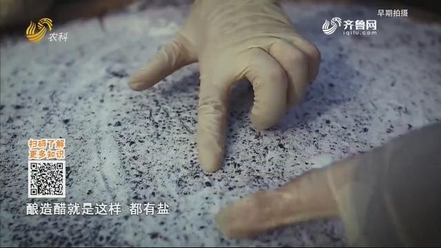 20200317《中国原产递》:枣米香醋