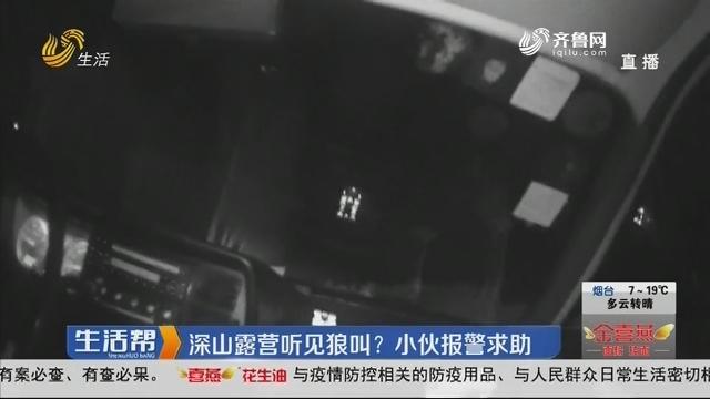 济南:深山露营听见狼叫?小伙报警求助