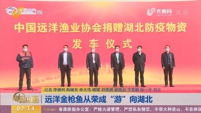 """远洋金枪鱼从荣成""""游""""向湖北"""