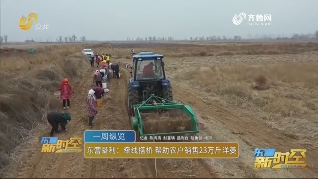 东营垦利:牵线搭桥 帮助农户销售23万斤洋姜